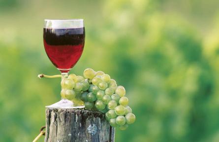 Un verre de vin et une grappe