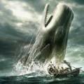 Moby Dick d'après le roman de Herman Melville