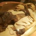 La momie de Ramses II