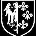 Logo de la division Charlemagne